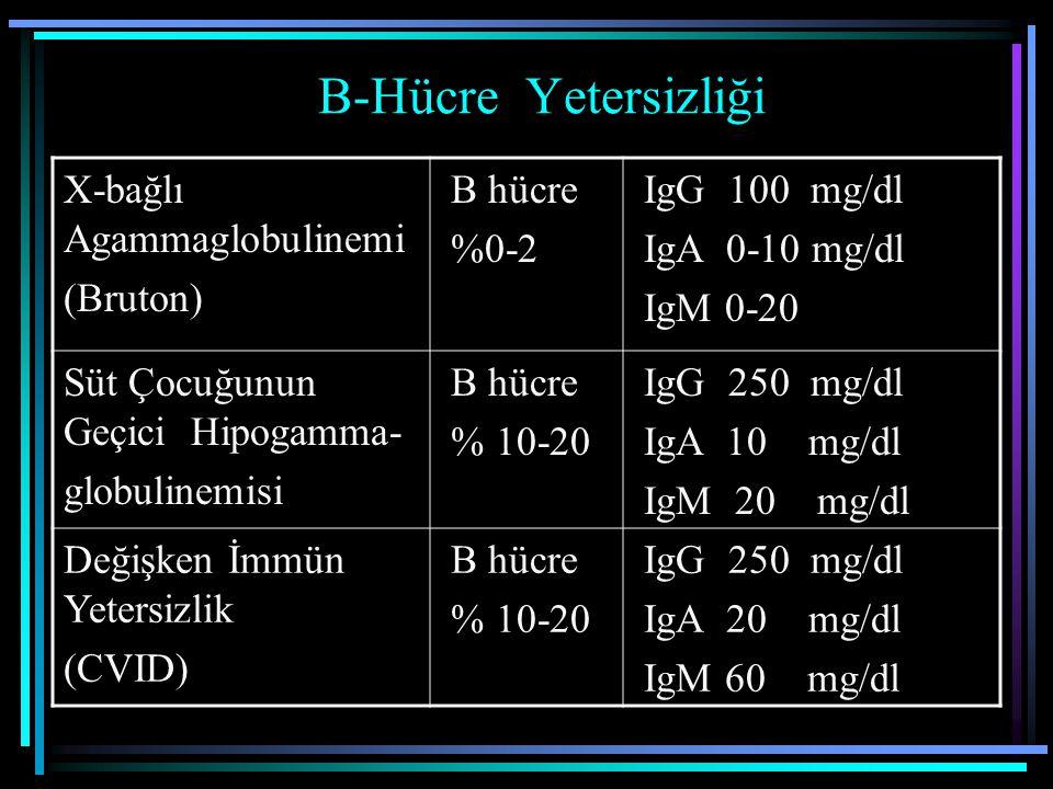 B-Hücre Yetersizliği X-bağlı Agammaglobulinemi (Bruton) B hücre %0-2