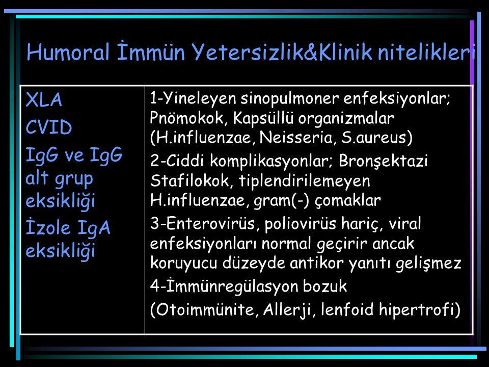 IgG ve IgG alt grup eksikliği