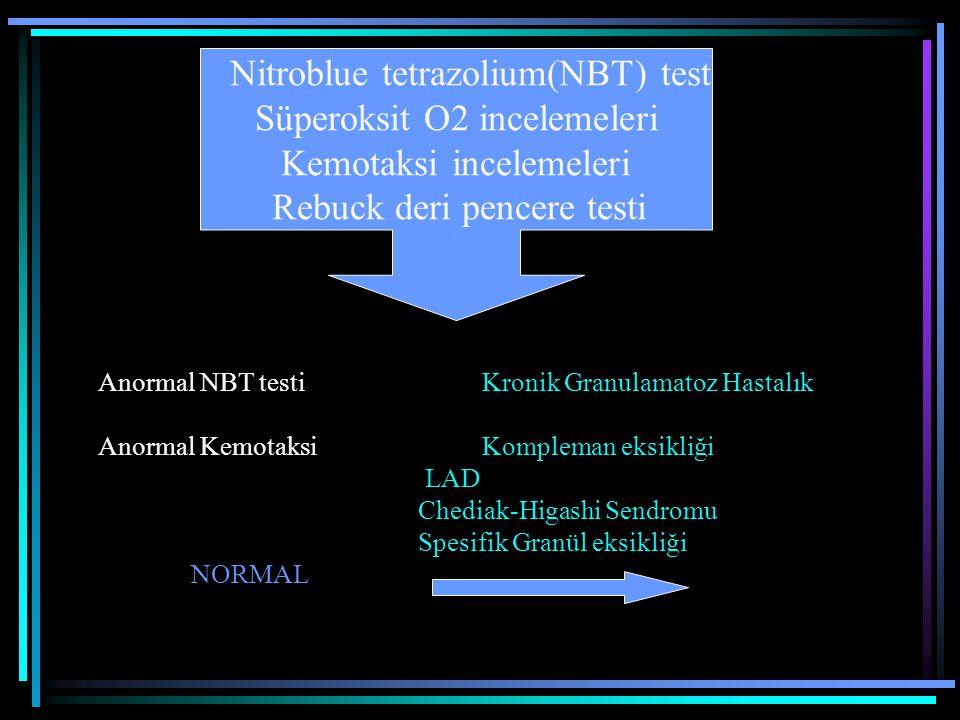 Nitroblue tetrazolium(NBT) test Süperoksit O2 incelemeleri