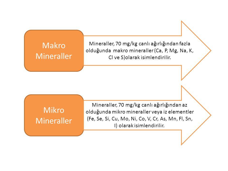 Makro Mineraller Mikro Mineraller