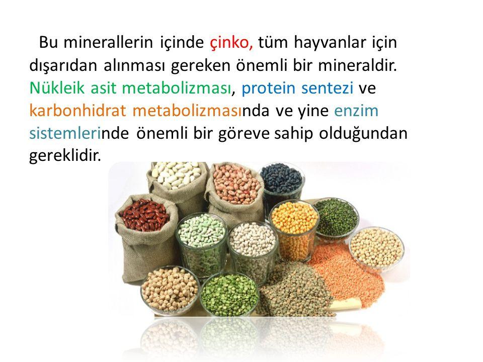 Bu minerallerin içinde çinko, tüm hayvanlar için dışarıdan alınması gereken önemli bir mineraldir.