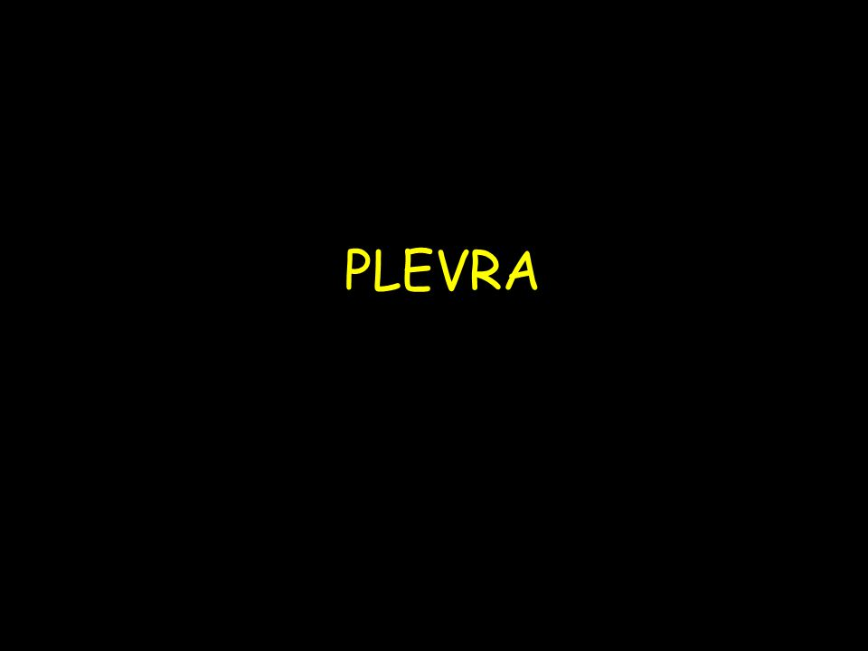 PLEVRA