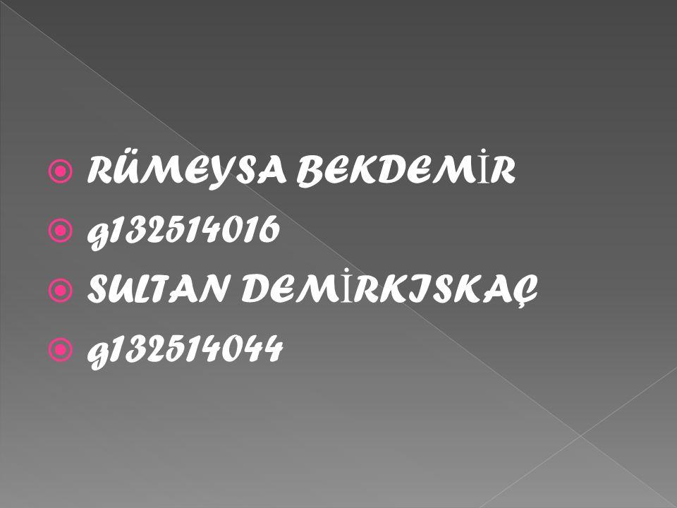 RÜMEYSA BEKDEMİR g132514016 SULTAN DEMİRKISKAÇ g132514044