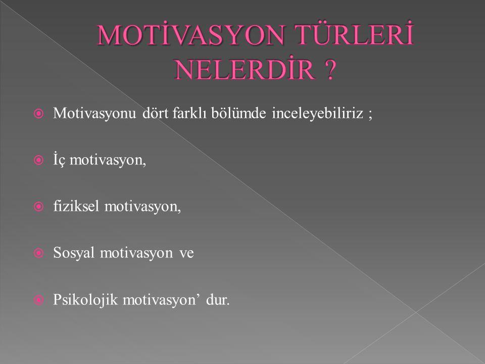 MOTİVASYON TÜRLERİ NELERDİR