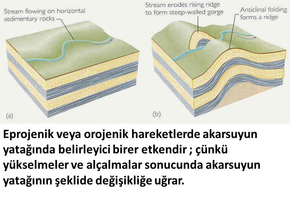 Eprojenik veya orojenik hareketlerde akarsuyun yatağında belirleyici birer etkendir ; çünkü yükselmeler ve alçalmalar sonucunda akarsuyun yatağının şeklide değişikliğe uğrar.