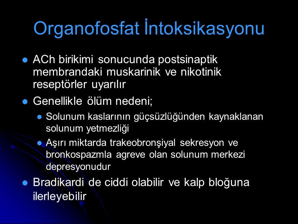 Organofosfat İntoksikasyonu