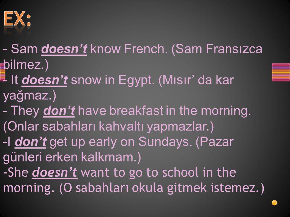 EX: - Sam doesn't know French. (Sam Fransızca bilmez.)