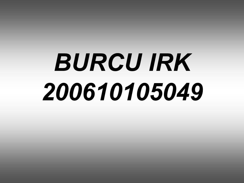 BURCU IRK 200610105049
