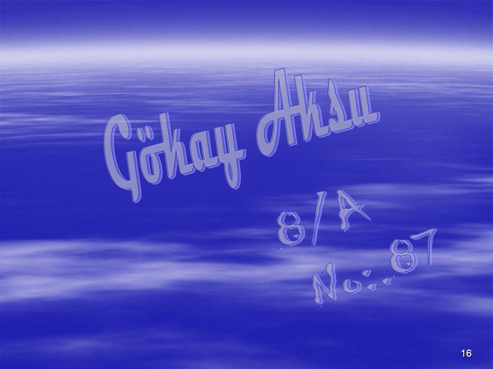 Gökay Aksu 8/A No:.87