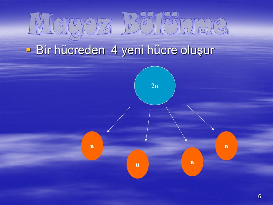 Mayoz Bölünme Bir hücreden 4 yeni hücre oluşur 2n n n n n