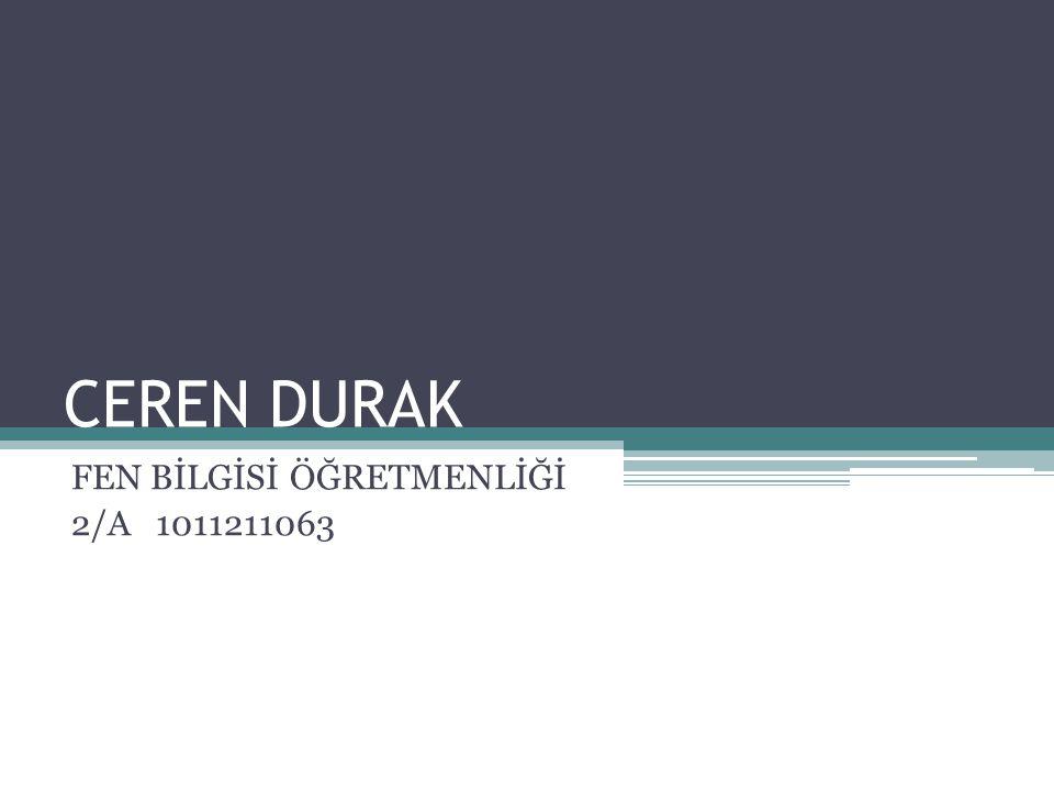 FEN BİLGİSİ ÖĞRETMENLİĞİ 2/A 1011211063