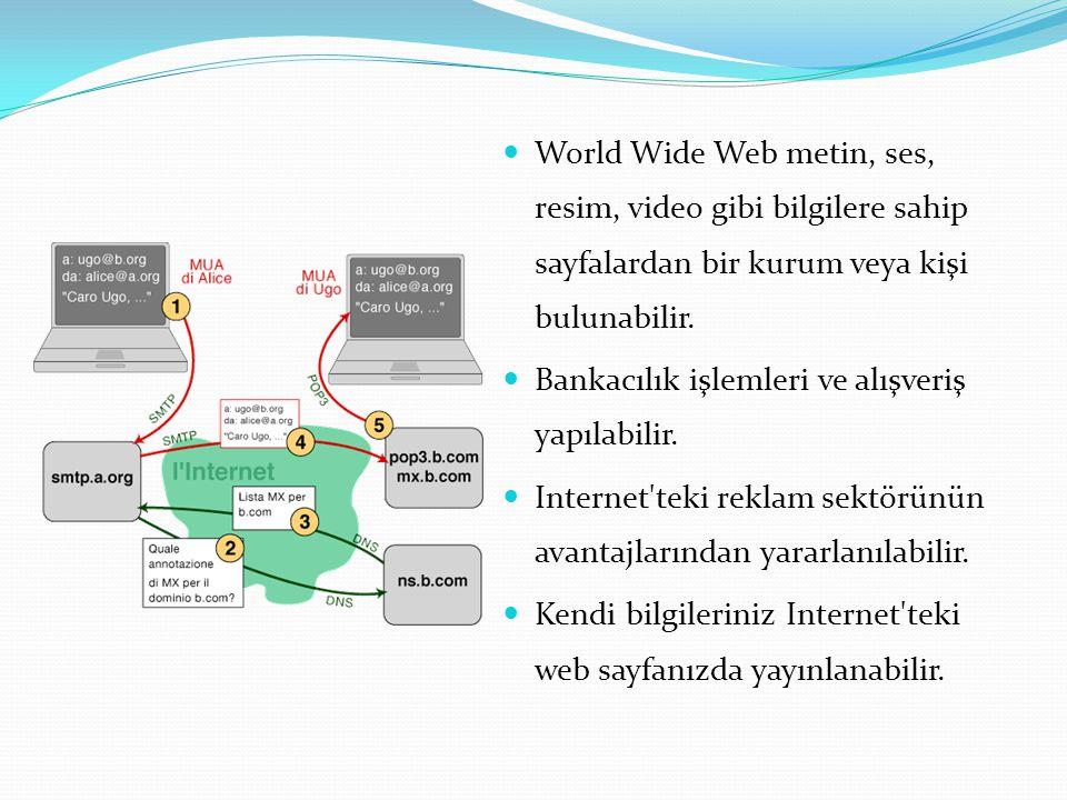 World Wide Web metin, ses, resim, video gibi bilgilere sahip sayfalardan bir kurum veya kişi bulunabilir.