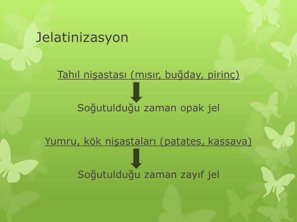 Jelatinizasyon