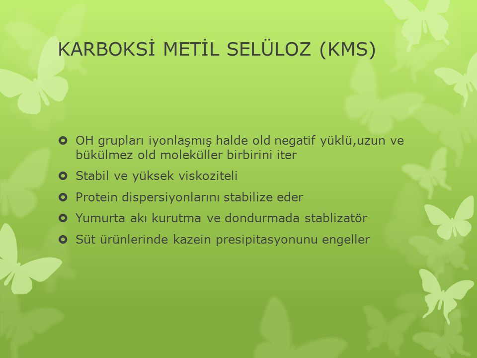 KARBOKSİ METİL SELÜLOZ (KMS)