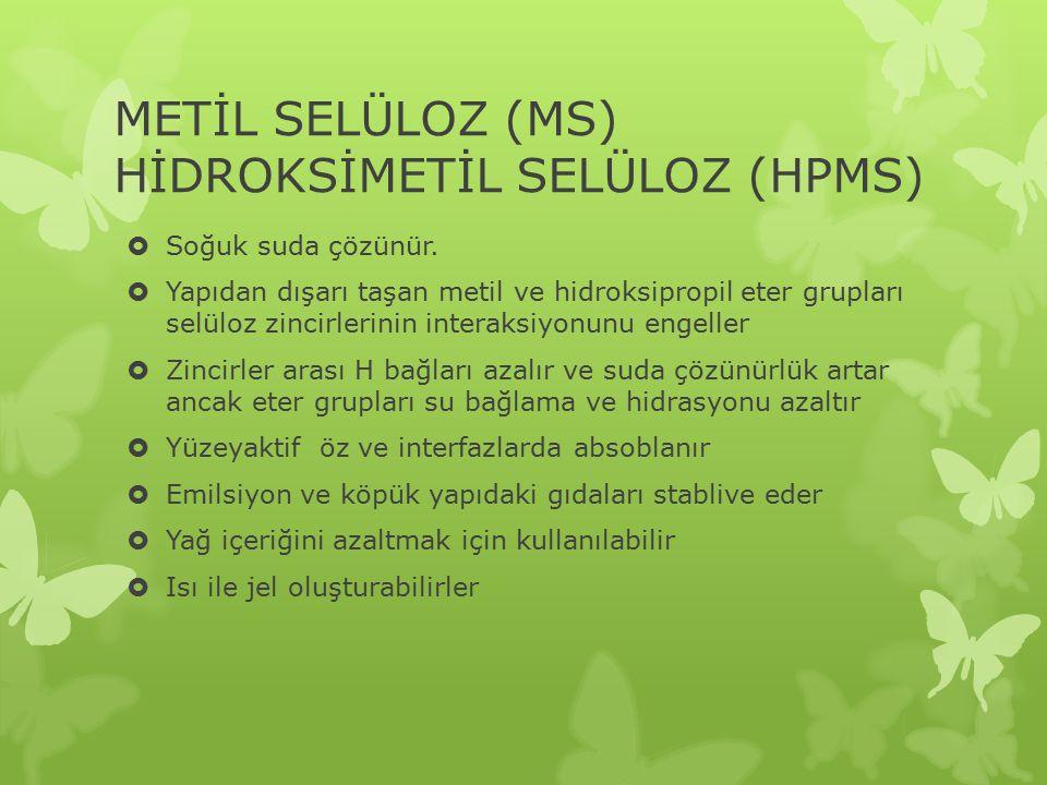 METİL SELÜLOZ (MS) HİDROKSİMETİL SELÜLOZ (HPMS)