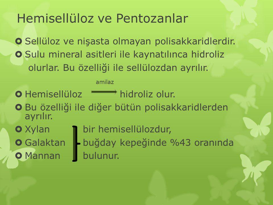 Hemisellüloz ve Pentozanlar