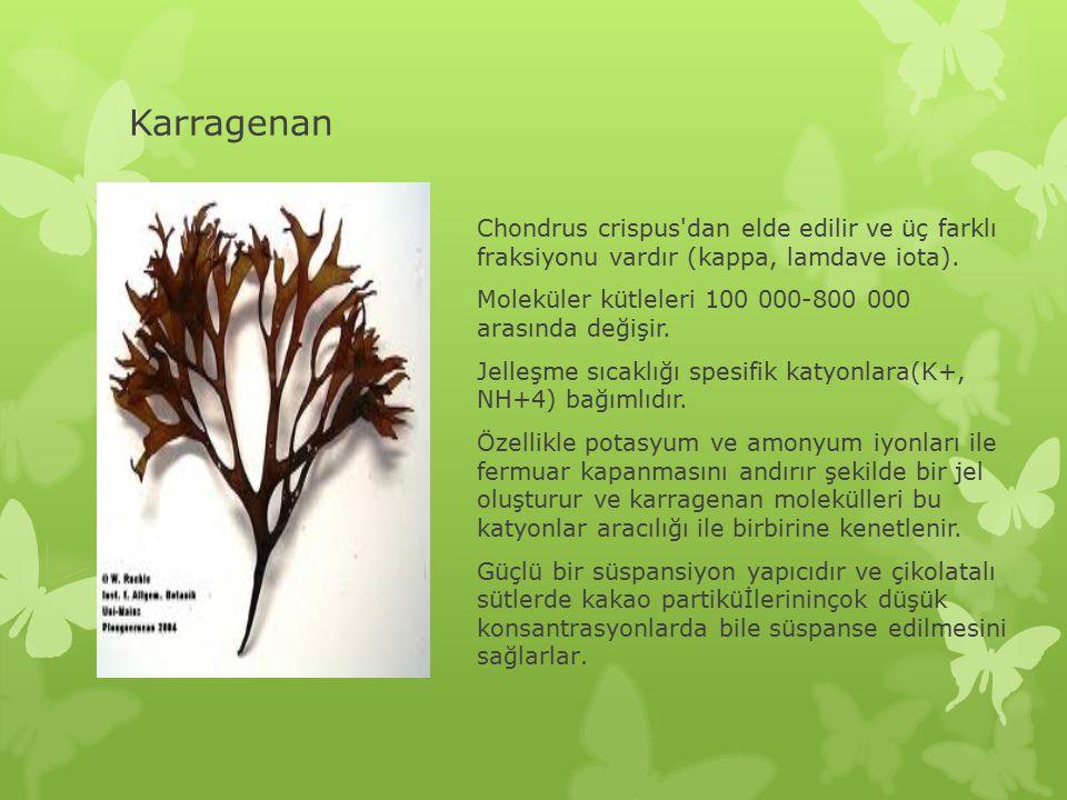 Karragenan