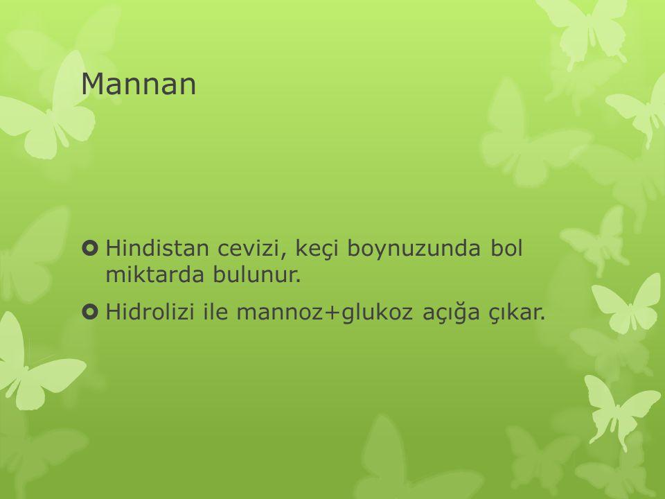 Mannan Hindistan cevizi, keçi boynuzunda bol miktarda bulunur.