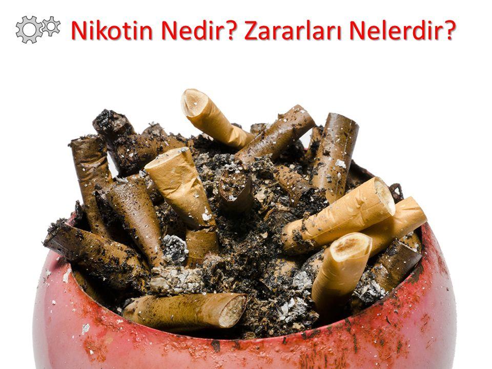 Nikotin Nedir Zararları Nelerdir