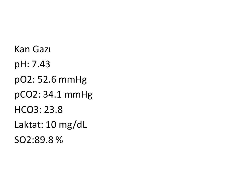 Kan Gazı pH: 7. 43 pO2: 52. 6 mmHg pCO2: 34. 1 mmHg HCO3: 23