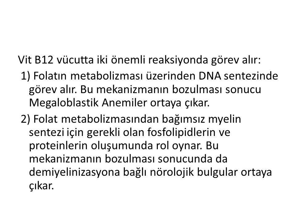 Vit B12 vücutta iki önemli reaksiyonda görev alır: 1) Folatın metabolizması üzerinden DNA sentezinde görev alır.