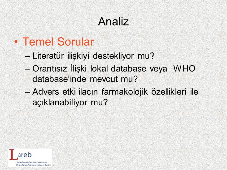 Analiz Temel Sorular Literatür ilişkiyi destekliyor mu