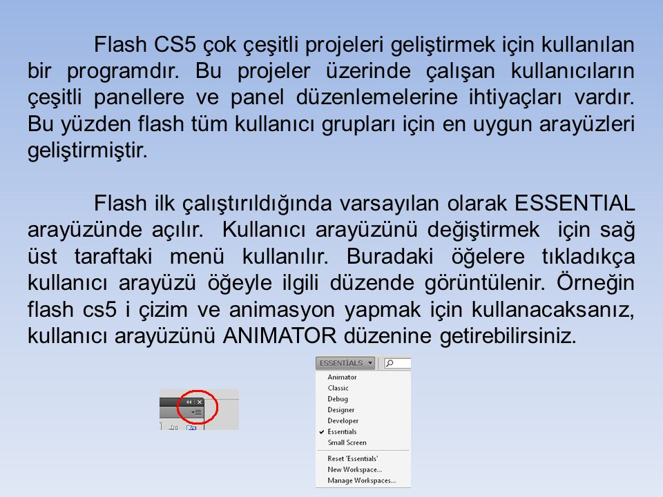 Flash CS5 çok çeşitli projeleri geliştirmek için kullanılan bir programdır. Bu projeler üzerinde çalışan kullanıcıların çeşitli panellere ve panel düzenlemelerine ihtiyaçları vardır. Bu yüzden flash tüm kullanıcı grupları için en uygun arayüzleri geliştirmiştir.