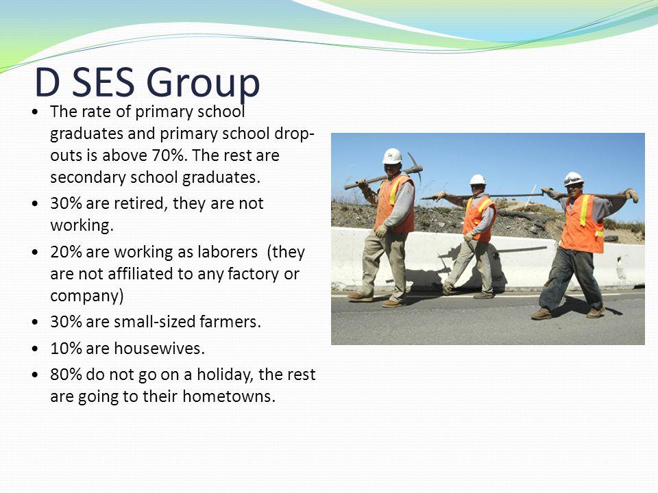 D SES Group