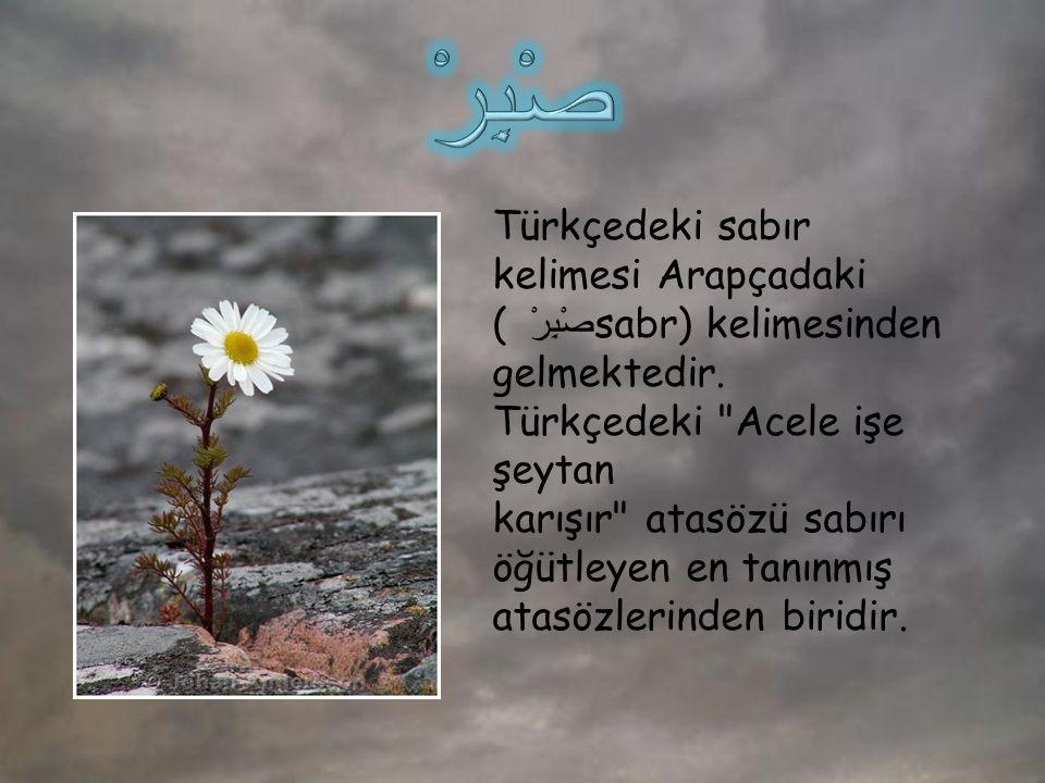 صْبِرْ Türkçedeki sabır kelimesi Arapçadaki