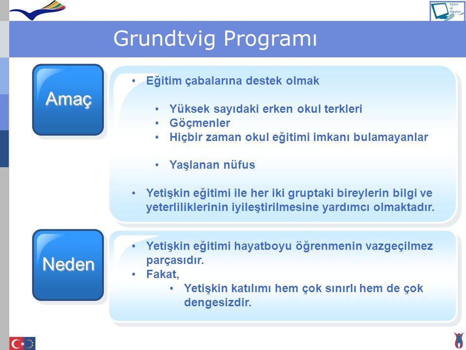 Grundtvig Programı Amaç Neden Eğitim çabalarına destek olmak