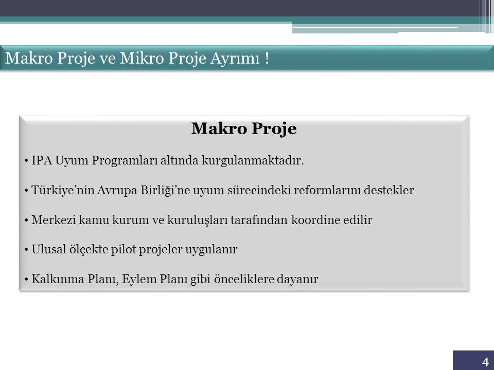 Makro Proje ve Mikro Proje Ayrımı !