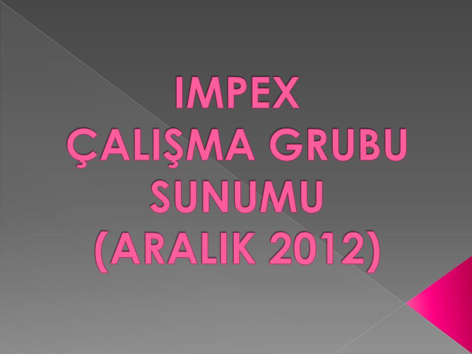 IMPEX ÇALIŞMA GRUBU SUNUMU (ARALIK 2012)