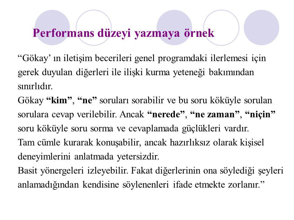 Performans düzeyi yazmaya örnek