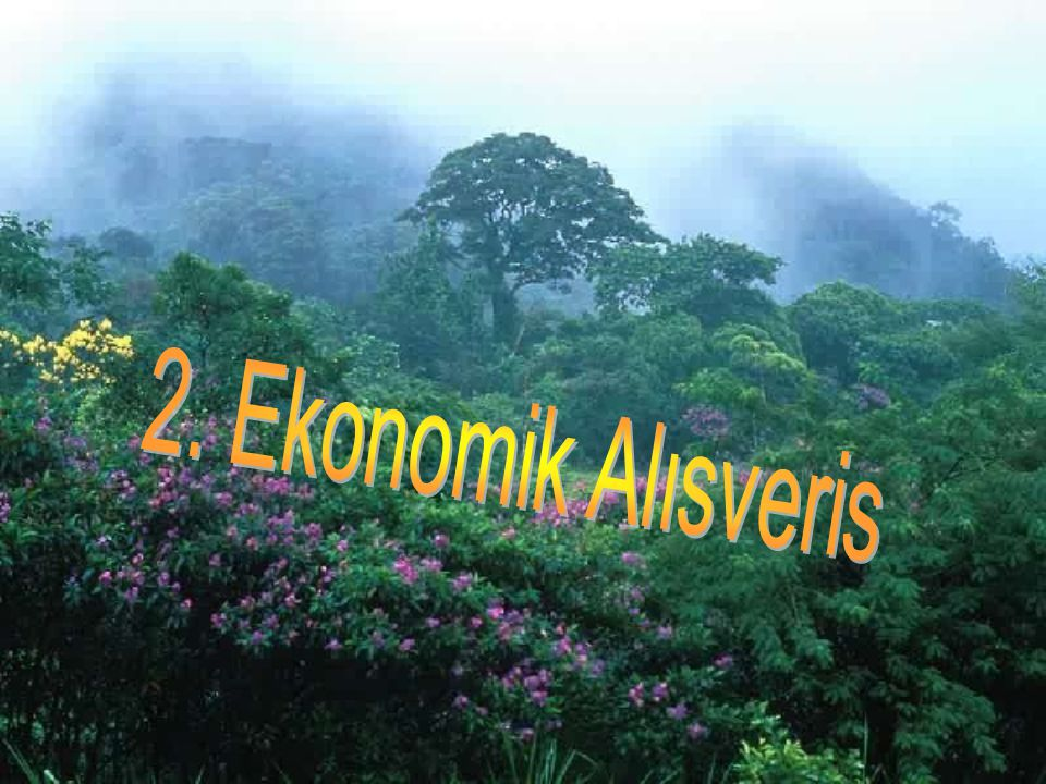 2. Ekonomik Alısveris