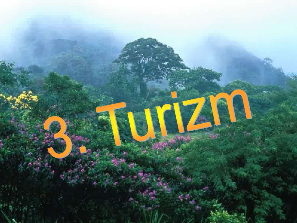 3. Turizm
