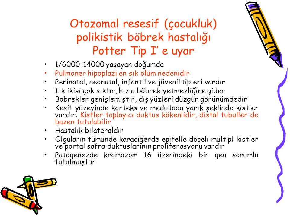 Otozomal resesif (çocukluk) polikistik böbrek hastalığı Potter Tip I' e uyar