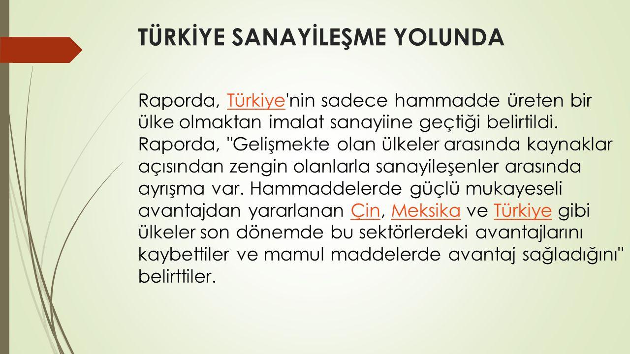 TÜRKİYE SANAYİLEŞME YOLUNDA