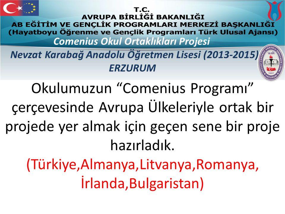 Comenius Okul Ortaklıkları Projesi