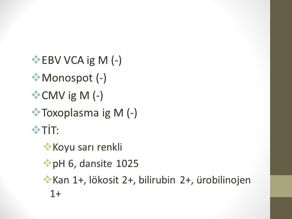 EBV VCA ig M (-) Monospot (-) CMV ig M (-) Toxoplasma ig M (-) TİT: