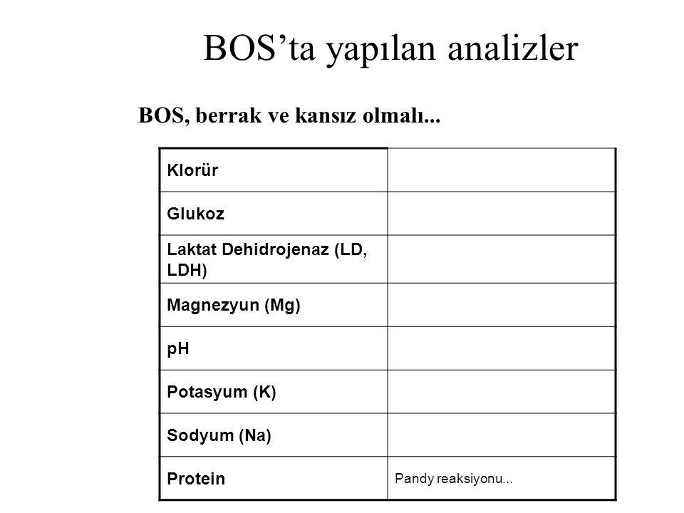 BOS'ta yapılan analizler