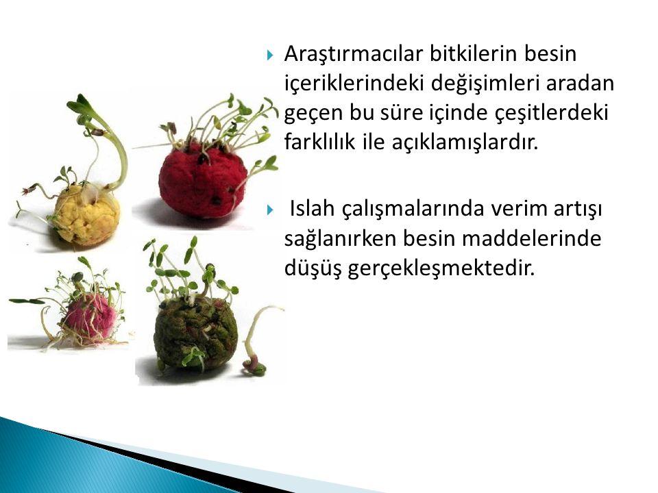Araştırmacılar bitkilerin besin içeriklerindeki değişimleri aradan geçen bu süre içinde çeşitlerdeki farklılık ile açıklamışlardır.