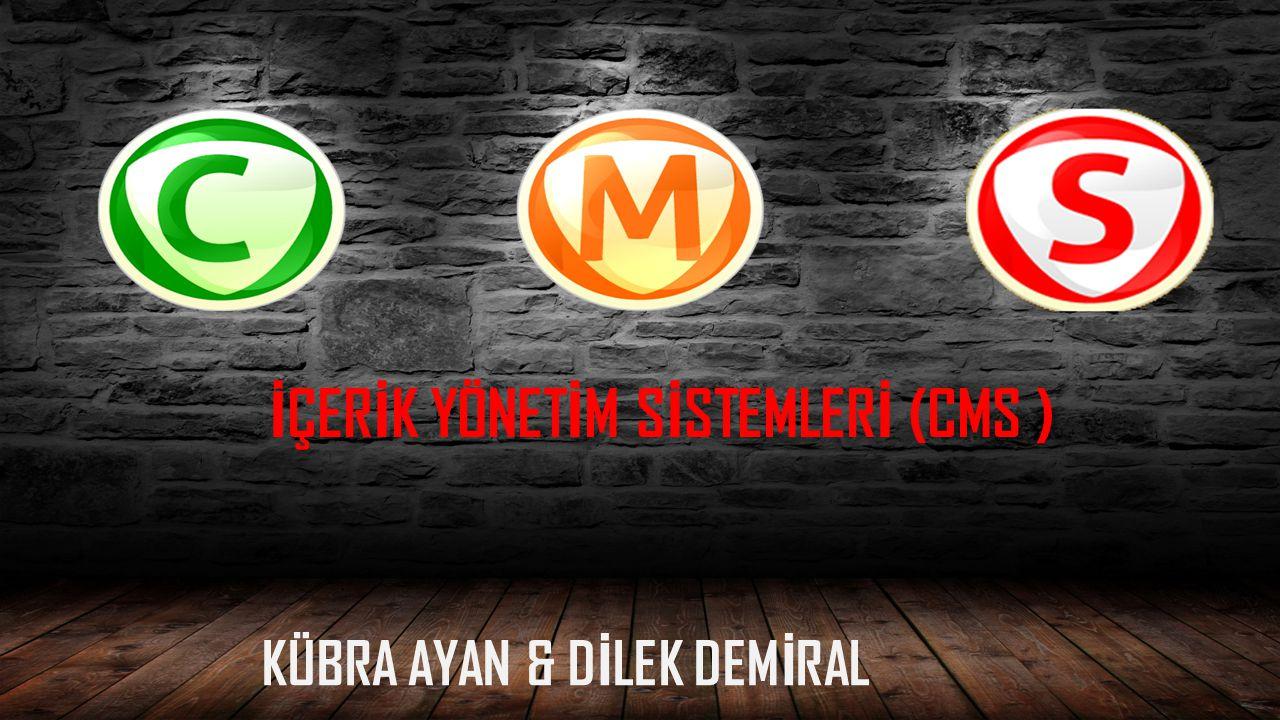 KÜBRA AYAN & DİLEK DEMİRAL