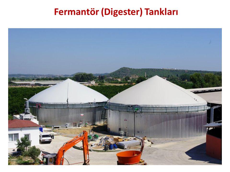Fermantör (Digester) Tankları