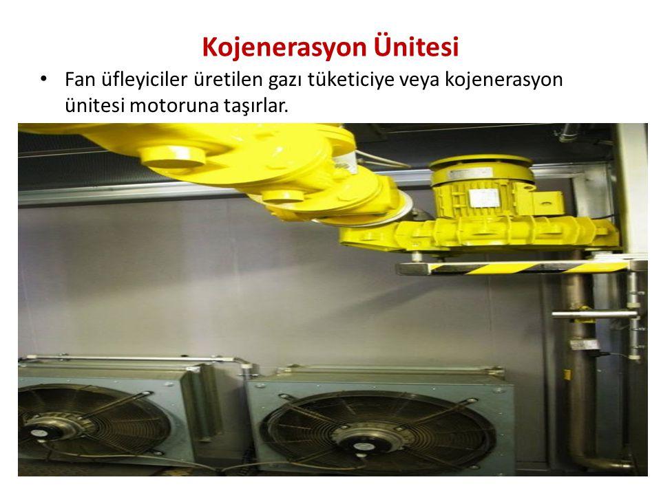 Kojenerasyon Ünitesi Fan üfleyiciler üretilen gazı tüketiciye veya kojenerasyon ünitesi motoruna taşırlar.