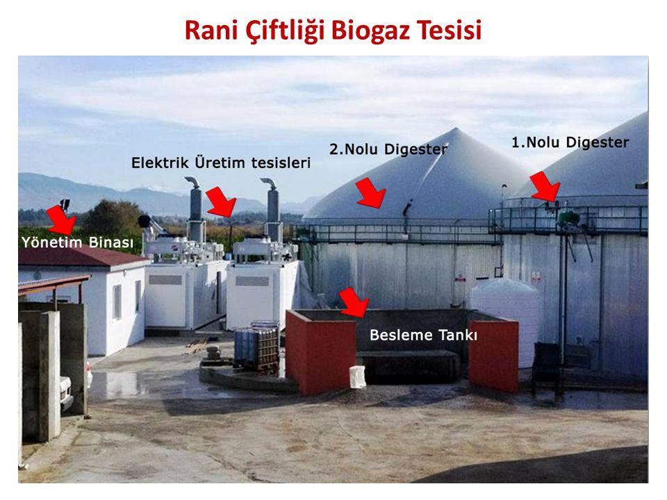 Rani Çiftliği Biogaz Tesisi