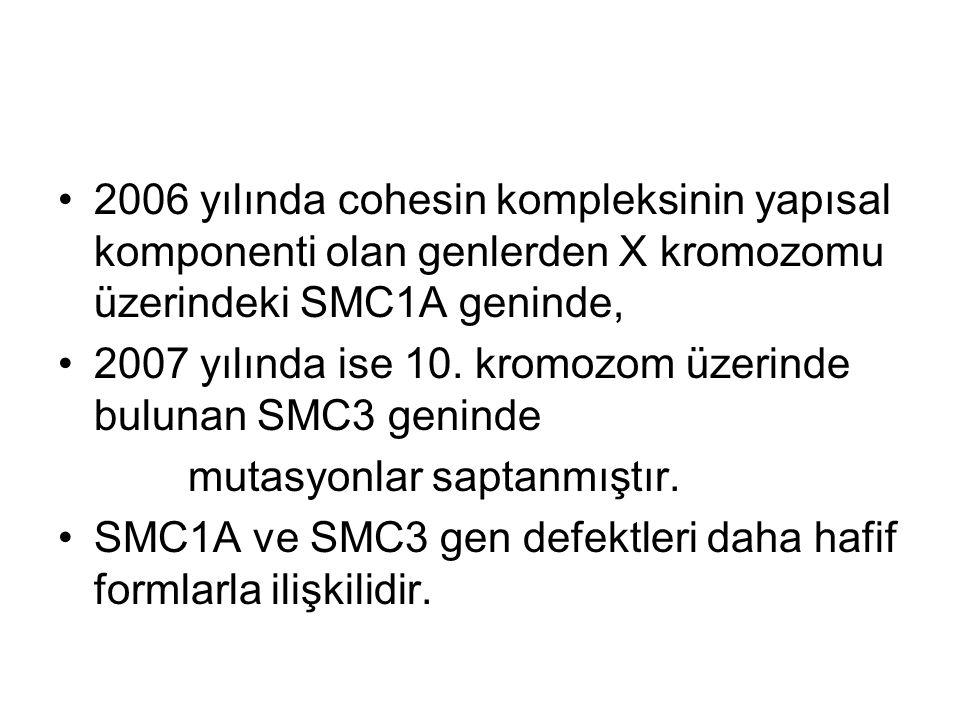 2006 yılında cohesin kompleksinin yapısal komponenti olan genlerden X kromozomu üzerindeki SMC1A geninde,