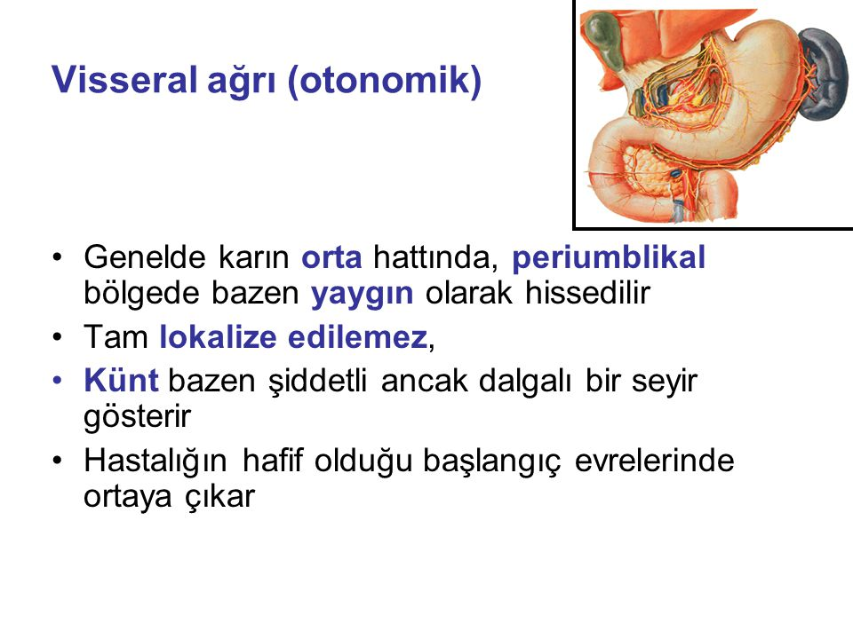 Visseral ağrı (otonomik)