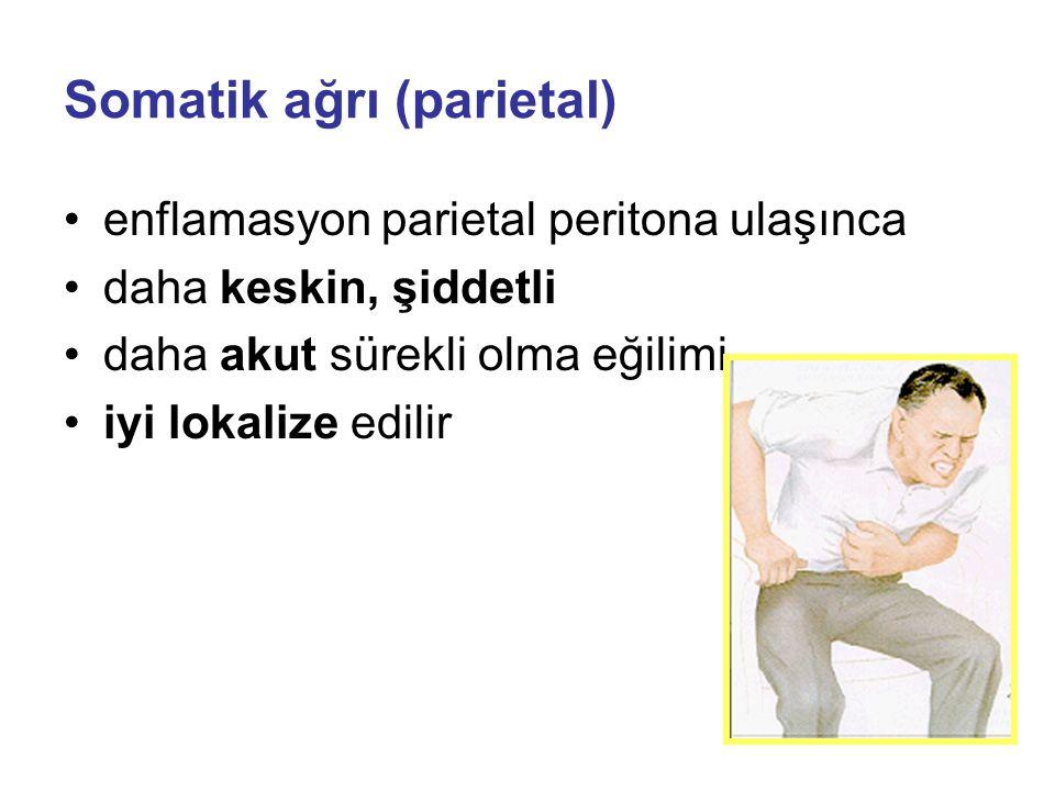 Somatik ağrı (parietal)