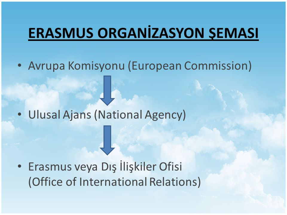 ERASMUS ORGANİZASYON ŞEMASI