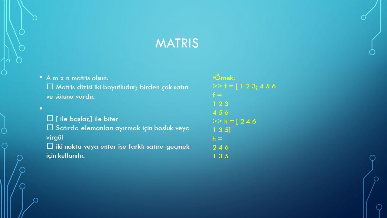 Matris A m x n matris olsun.  Matris dizisi iki boyutludur; birden çok satırı ve sütunu vardır.